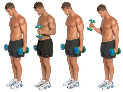 Alternate Biceps Curl hammer