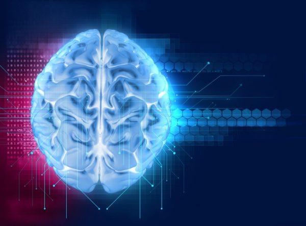 Cetosis y el cerebro fuente de energia