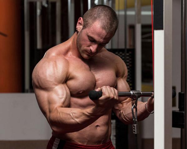 Ganar masa biceps triceps