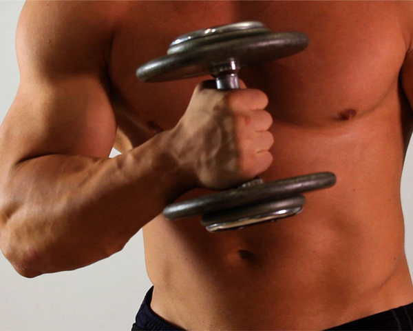 Musculos que trabajan curl biceps