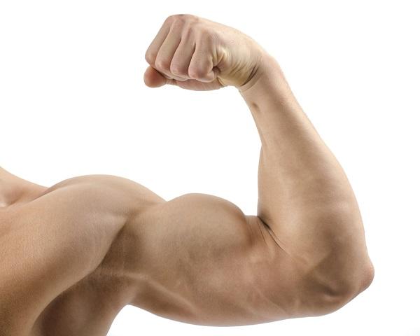 curl biceps supinacion