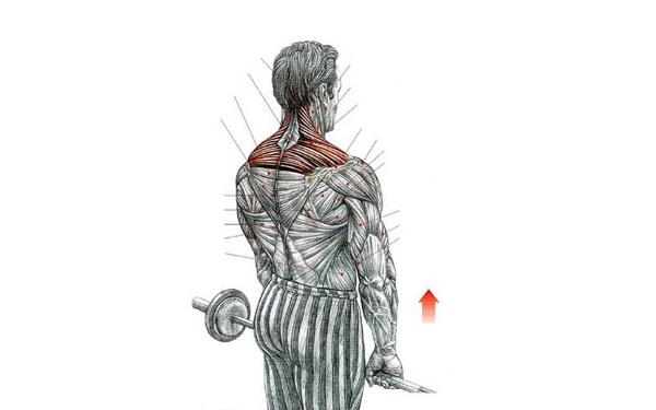 encogimiento hombros