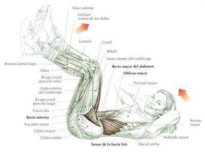 encogimientos-abdominales