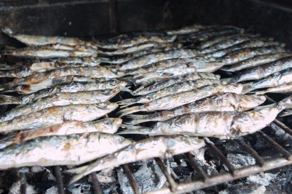 Las mejores recetas para perder peso sin pasar hambre sardinas