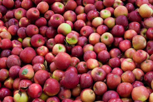 Los 15 alimentos con los que sacaras abdominales manzanas
