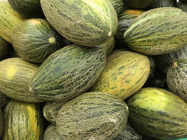 Mejores frutas para perder grasa definir melon