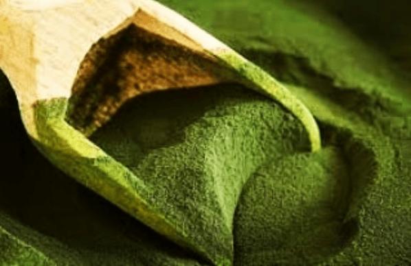 Los mejores suplementos naturales para controlar el colesterol Alga chlorella