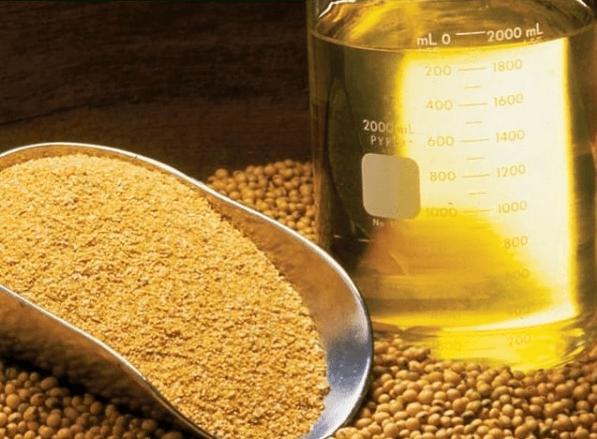 Los mejores suplementos naturales para controlar el colesterol portada