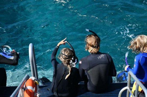 ¿Qué es el Snorkel? Cómo se practica, qué se necesita y cuándo se hace inmersión
