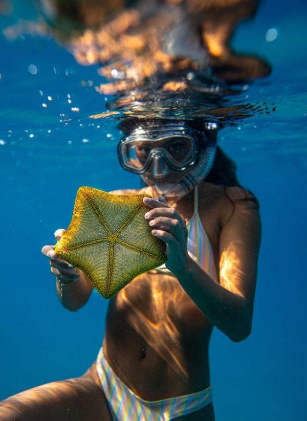 ¿Qué es el Snorkel? Cómo se practica, qué se necesita y cuándo se hace estrella de mar