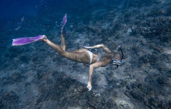 ¿Qué es el Snorkel? Cómo se practica, qué se necesita y cuándo se hace mar en calma