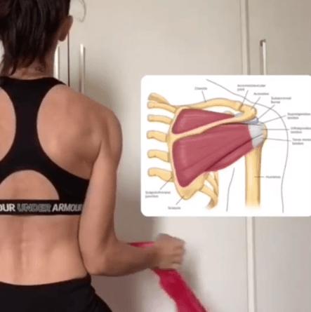 ¿Qué es el manguito rotador? Síntomas, causas y tratamiento ejercicios