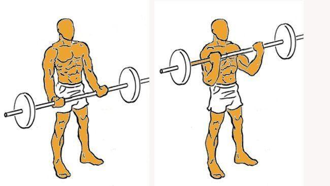 Como-hacer-el-Curl-de-Biceps-con-Barra
