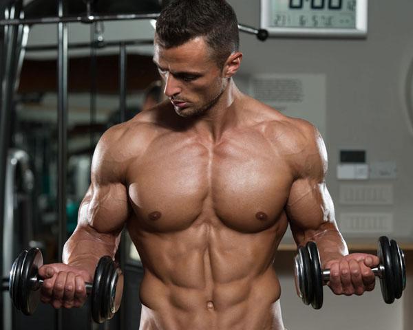 Conseguir aumentar biceps