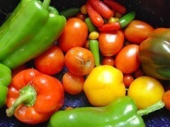 Perder peso sin hacer dieta | Verduras