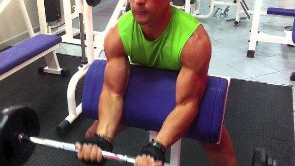 biceps scott