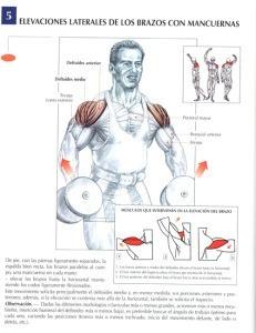 http://rutinasentrenamiento.com/wp-content/uploads/elevaciones-laterales-de-los-brazos-con-mancuernas-231x300.jpg