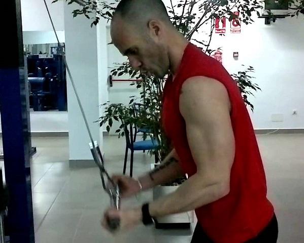 extensiones triceps polea