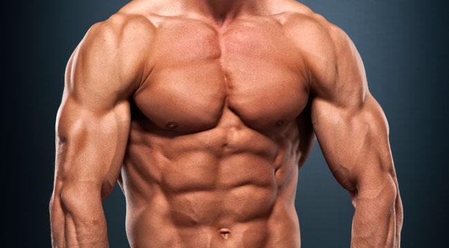 ganas musculo