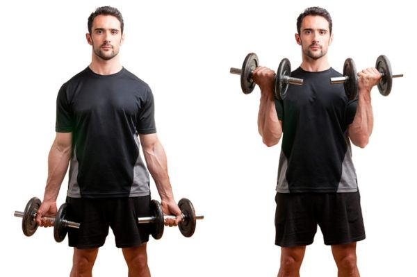 Los mejores ejercicios para los grupos musculares biceps