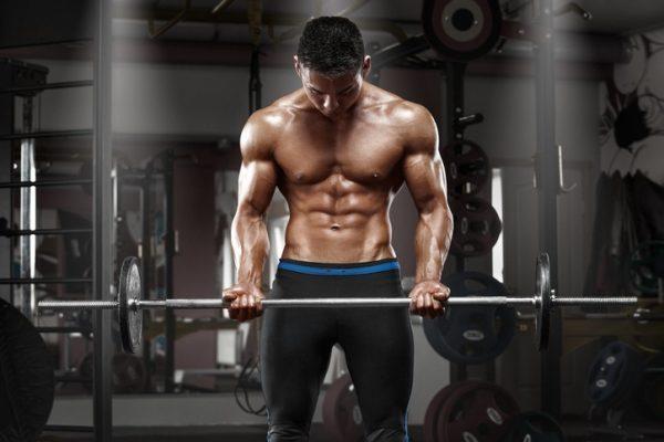 Los mejores ejercicios para los grupos musculares portada