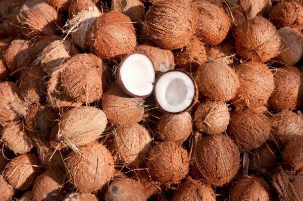 Muchos cocos cerrados
